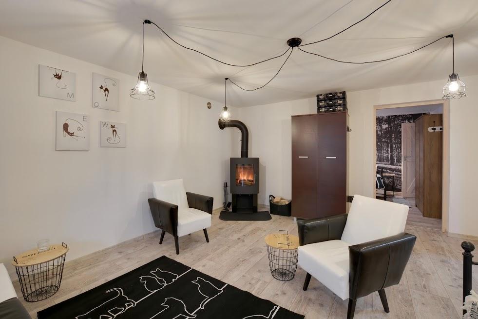 CZARNY KOT - wejście do pokoju 3 osobowego z salonu . Salon może stanowić z tym pokojem apartament.